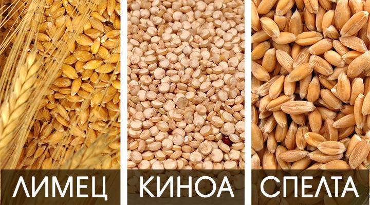 eincor-quinoa-spelta